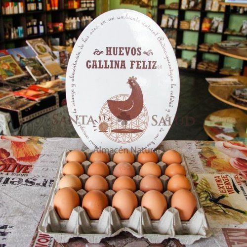 """Huevos """"gallina feliz"""" - Santasalud.cl"""