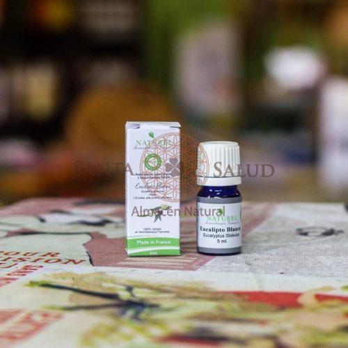 "Aceite esencial Eucalipto Blanco ""Naturel"" - Santasalud.cl"